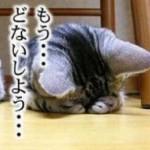 attachment00_10.jpg